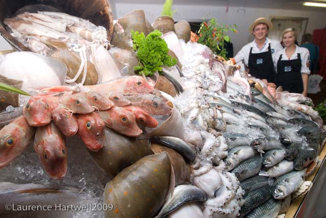 Image result for newlyn gaps fish festival